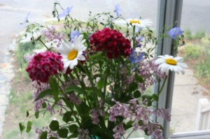 From the cutting garden, daisy, sweet william, lilac